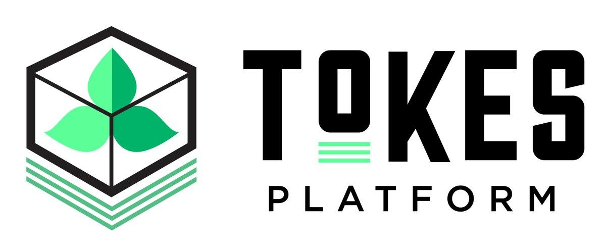 Tokes Platform logo